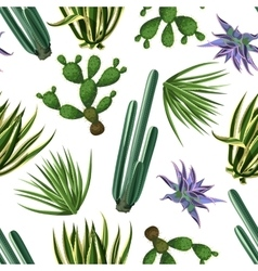 Seamless pattern with cactuses and succulents set vector image