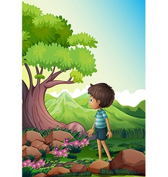 A boy near the giant tree in the forest vector image