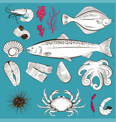 Hand drawn sketch with seafood and fish vector