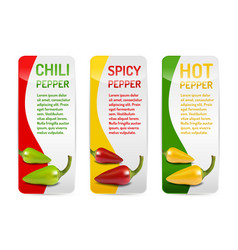 Red green and yellow chili pepper banner vector