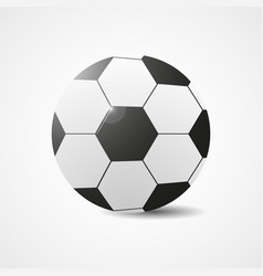 soccer ball football ball vector image