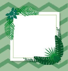 tropical leaves frame vector image