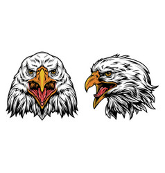 Vintage colorful eagle heads concept vector