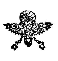 vintage drawing or engraving antique floral vector image