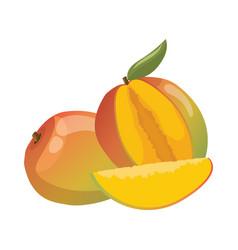 cartoon mango an a mango in a vector image