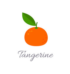 Tangerine icon with title vector