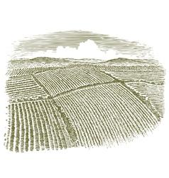 Woodcut aerial field vector