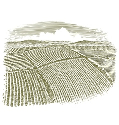 Woodcut aerial of field vector