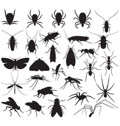 Silhouette household pests vector image