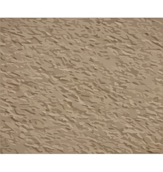 Stucco plaster texture vector image vector image