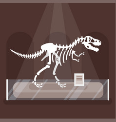 Dinosaur skeleton in museum vector