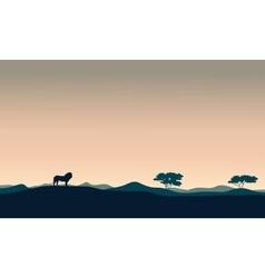 Beautiful landscape lion silhouettes vector image