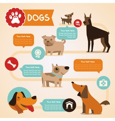 Dogs infographics vector