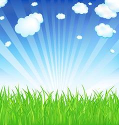 fresh spring grass vector image