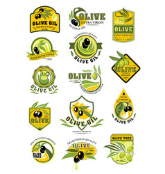 Olive oil and fruit label set for food design vector