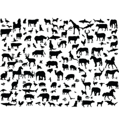 Big collection of animals vector