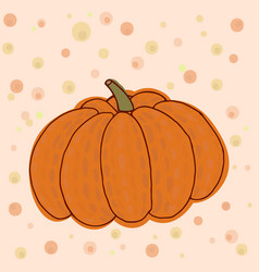big ripe pumpkin vector image