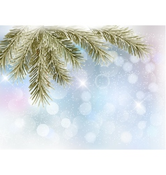 Christmas background with tree branches vector