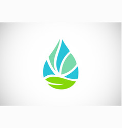 green leaf droplet logo vector image