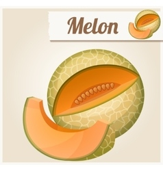 Melon Detailed Icon vector image