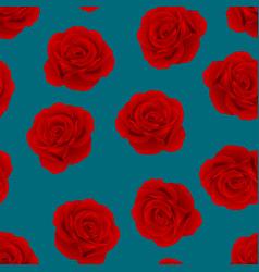red rose on indigo blue background vector image