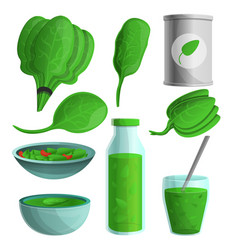 spinach icon set cartoon style vector image