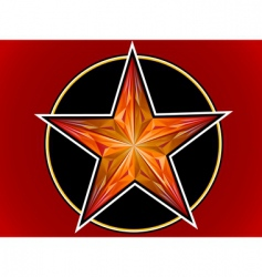 star from a ruby vector image