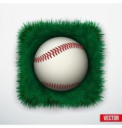 Icon Baseball ball in green grass vector image vector image