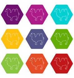 camel icons set 9 vector image