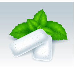 Chewing gum with mint flavor vector
