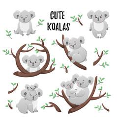 collection of cute cartoon koalas set of vector image
