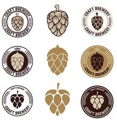 Set of craft beer labels vector