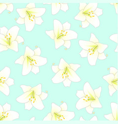 White lily on green mint background vector