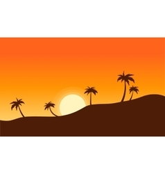 Silhouette of palm lined landscape sunset vector image
