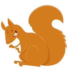 squirrel cartoon animal character vector image