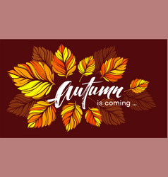 fall background design with colorful autumn leaves vector image vector image