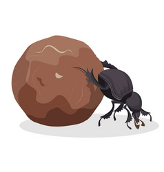 Big dung beetle that pushes big dirty ball vector