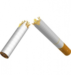 Broken cigarette vector