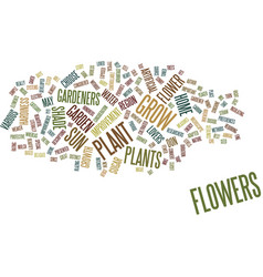 Flowers that beautify your home and garden text vector