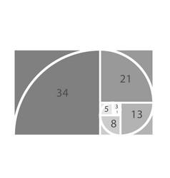 Golden proportion template in golden proportion vector