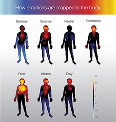 heat map of the human body depending on the vector image