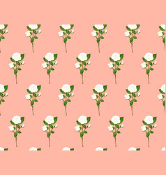 white rose bouquet on orange pink background vector image
