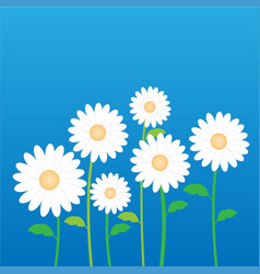 white daisy flower in decorative stock vector image vector image