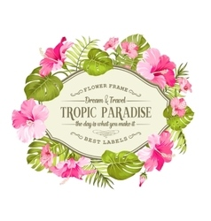 Beautiful tropic card vector image
