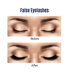 Eyes false lashes realistic vector