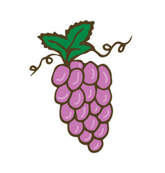 grape icon hand drawn print sticker vector image