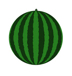 green watermelon icon vector image