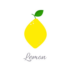 lemon icon with title vector image