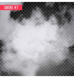 Smoke special effect on transparent Fog isolated vector