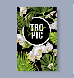 Tropic orchid banner vector